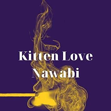 Kitten Love Nawabi