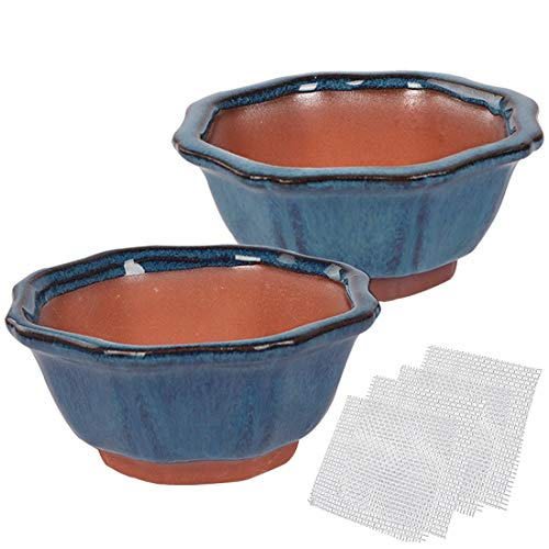 Happy Bonsai Small Glazed Pots, Value Set of 2 + 4 Soft Mesh Drainage Screens