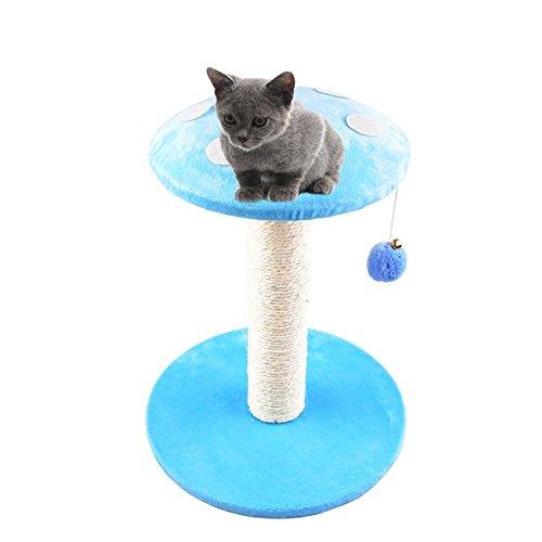 Gatto gattino albero tiragraffi con mouse e peluche con bella a forma di fungo