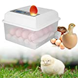 ETE ETMATE Incubatrice automatica per uova 16 uova incubatrice per uova Incubatrice per uova domestiche Incubatrice con controllo della temperatura Turner per la schiusa di uova di quaglia di tacchino