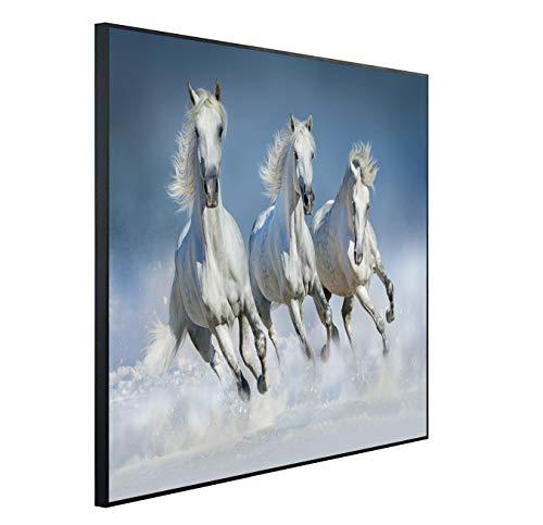 Ecowelle Infrarotheizung mit Bild | 350 Watt | 60x60 cm | Infrarot Heizung| | Made in Germany| (1) b 44 laufende Pferden