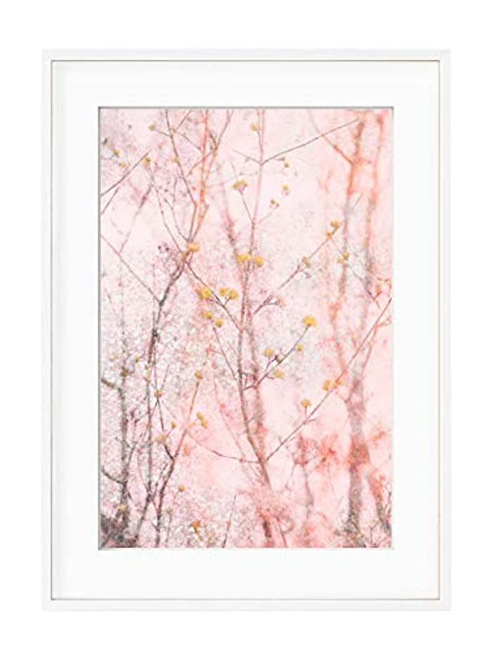 Japanese Branch Pink Satin Black Aluminium Frame with Mount, Multicolored, 40x50