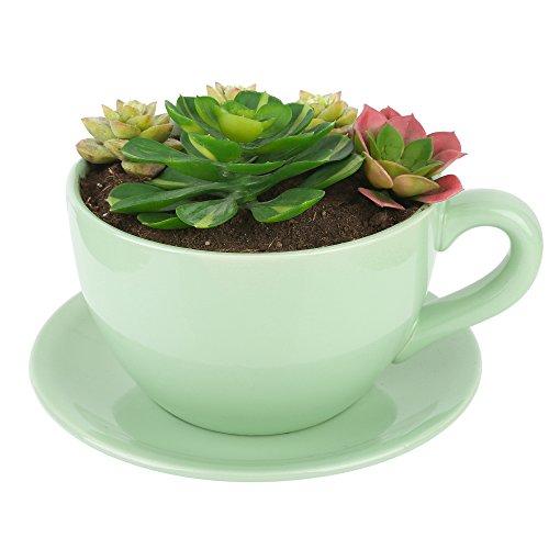 Succulentes pot de fleur grande céramique Violet Sable Carré Simple Classique Sol