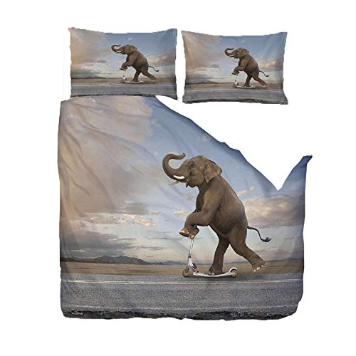 HANTAODG Duvet Cover King Size African elephant riding a bike 220x260cm Print Duvet Cover Soft Skin-Friendly Quilt Cover Easy Care And Machine Washable,Microfiber Quilt Sets