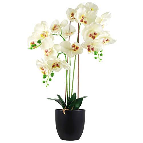Leaf Luxe Realistische Kunstmatige Orchidee Planten Ontwerp UK (60cm groot wit), 65cm