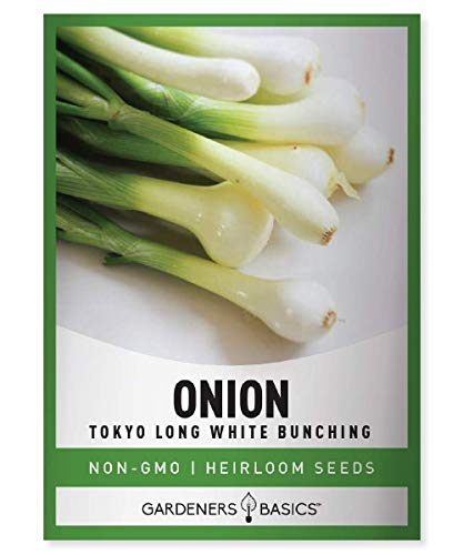 Green Onion Seeds for Planting - Tokyo Long White Bunching is A Great Heirloom, Non-GMO Vegetable Variety- 200 Seeds Great for Outdoor Spring, Winter and Fall Gardening by Gardeners Basics