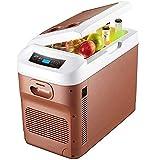 BIIII Nevera portátil, refrigerador eléctrico de 28 litros, 12V / 24V / 220V DC Cooler portátil para Bebidas, mariscos, Frutas, hogar y Viaje