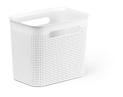 Rotho Brisen schmale Aufbewahrungsbox 7l mit 2 Griffen, Kunststoff (PP) BPA-frei, weiss, 7l (26,2 x 18,0 x 21,1 cm)