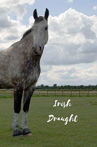 Irish Draught: Journal and Notebook - Composition Size (6'x9') With 120 Lined Pages, Perfect for Journal, Doodling, Sketching and Notes
