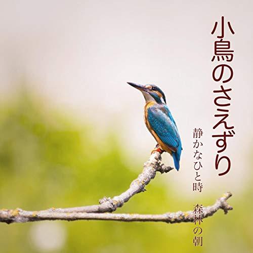 Chirp bird chirping -Mountain hut on rainy day-