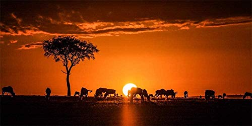 WXLSL Puzzles Holzpuzzle Für Erwachsene 1000 Stück, Afrika Kenia Safari, Sonnenuntergang Silhouette Puzzle Spiele Home Decor Geschenke