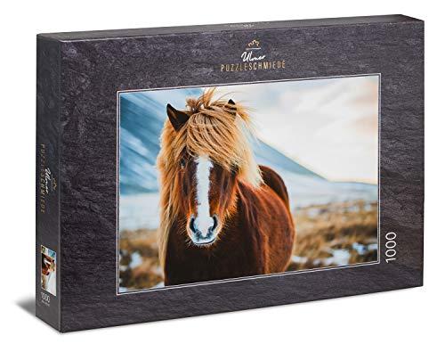 Ulmer Puzzleschmiede - Puzzle Cavallo Islandese in Inverno - Bel Puzzle di Cavalli: Bel Pony Islandese di Fronte alla Natura Invernale in Islanda