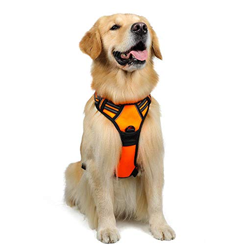 rabbitgoo Dog Harness,No-Pull Pet Harness with 2 Leash Clips,Adjustable Soft Padded Dog Vest,Reflective No-Choke Pet Oxford Vest with Easy Control Handle for Large Breeds,Orange (L, Chest 20.5-36')