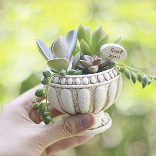BBZ Pot de Fleur européen Silicone Moule béton succulentes jardinières Pot Moule Romain Colonne Conception Vase moules, 8x8x6 cm