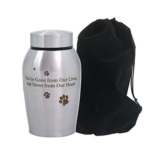 professional Enclose the jar for the cremation of dogs and cats in memory of the deceased, but don't forget that you left your front legs …