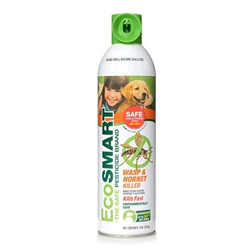 EcoSMART Organic Wasp Killer spray