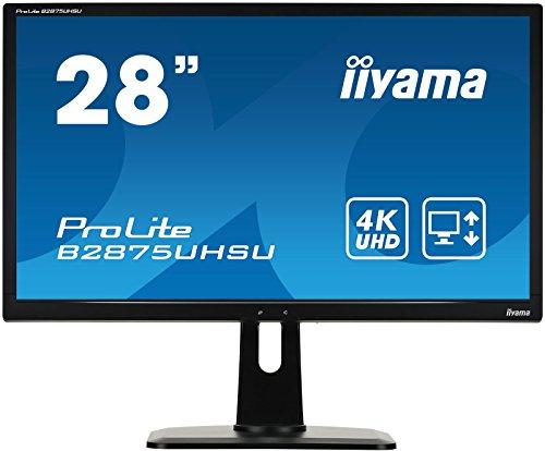 iiyama ProLite B2875UHSU-B1 71cm (28