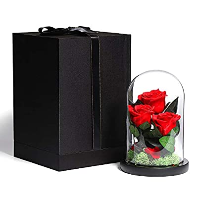 WILDLOVE Beauty and The Beast Rose, Red Forever Preserved Rose in The Glass Dome Real Rose Flower Gifts for Her Valentines Day Anniversary Birthday Gifts for Wife Girlfriend Three Flows