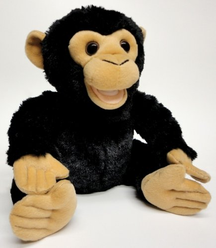 Zoocational Press, Play And Learn Coco The Chimpanzee 9 Inch Soft Toys