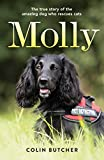 Molly: The True Story of the Amazing Dog Who Rescues Cats cat trackers May, 2021