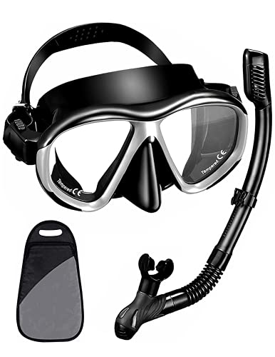 Snorkel Set, Dry Snorkeling Gear Panoramic Wide View Mask with Anti Fog Tempered Glass, Anti Leak Snorkel Gear with Adjustable Strap and Easy Breathing for Scuba Diving