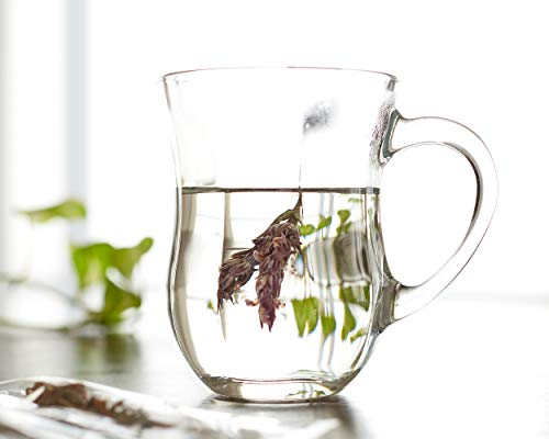 6 Pasabahce Set Ayran Henkelbecher Glas Gläser Gurme Mug Henkel Glasbecher Neu
