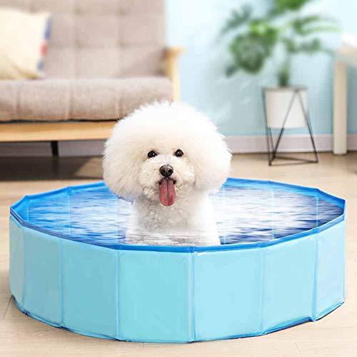 Weehey Piscina Plegable para Perros Piscina Plegable para Perros Piscina para Mascotas Piscina para Perros Perros Gatos
