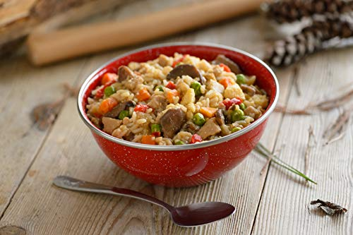 Mountain House Chicken Fried Rice   Freeze Dried Backpacking & Camping Food   Gluten-Free 4