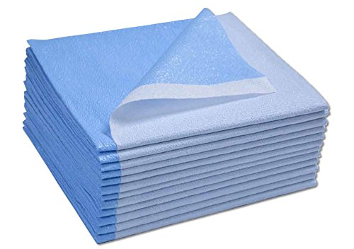 Avalon Papers 359 Stretcher Sheet, Tissue/Poly, 40'' x 90'', Blue (Pack of 50)