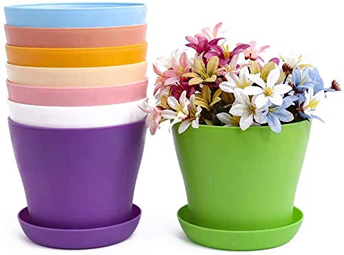 TOKERD 10 Piezas Macetas de Plástico con Plato Coloridas 14cm Macetas de Plantas de Interior y de Exterior para Oficina u Hogar