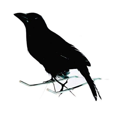 Cuervo negra decoración Cuervo con plumas düsterer pájaro Party Deko spuk Cuervo pájaro habitación pájaro decorativo fogueo Antepecho cuento Bruja Figura decorativa Antepecho Decoración de Halloween Horror
