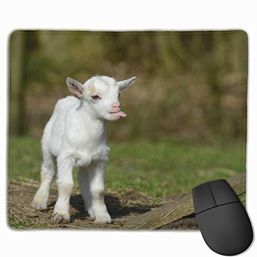 Funny Baby Goat Smile Moment Anti-Slip Personalized Designs Gaming Mouse Pad Black Cloth Rectangle Mousepad Art Natural Rubber Mouse Mat with Stitched Edges 9.811.8 Inch