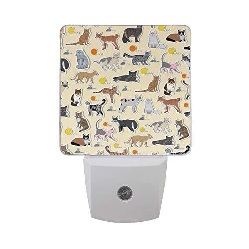Rasse Katze Symbol Aufkleber niedlichen Tier Haustier Design verschiedene Kätzchen mit Maus Ball Form Ballon auf beige Auto Sensor Nachtlicht