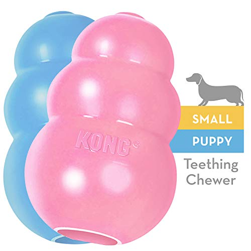 KONG PUPPY Durable Rubber Chew and Treat Toy