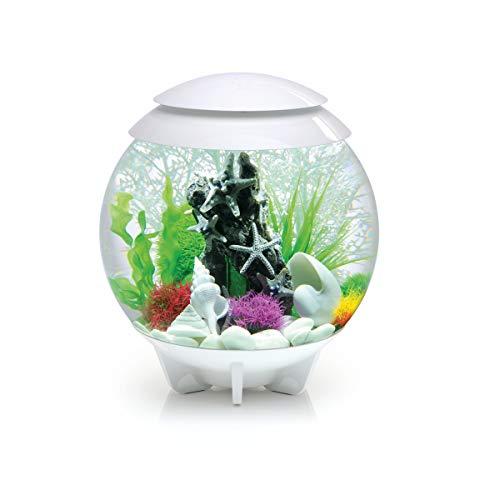 Oase Biorb Halo 30 LED pour Aquarium Blanc 4,156 kg