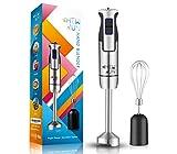 CHEW FUN Multipurpose Immersion Hand Blender 【Gift Box】Poweful 500 Watt,9-Speed,High Power Low...
