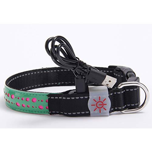 XDYFF Leuchtendes Halsbänder, LED Halsband Hund, leuchtende Edelstein leuchten Hundehalsband Nacht Sicherheit,Green,M