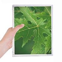 新鮮な葉植物の性質 硬質プラスチックルーズリーフノートノート