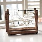 Jardinera de cristal de escritorio, florero con soporte de madera vintage y barra de metal, jarrones de decoración casera Vidrio de jarrón de bulbo para plantas hidr 2 glass bottles