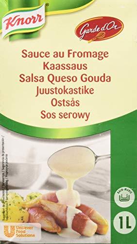 Knorr Garde D\'Or Salsa Queso Gouda líquida lista para usar brik 1L
