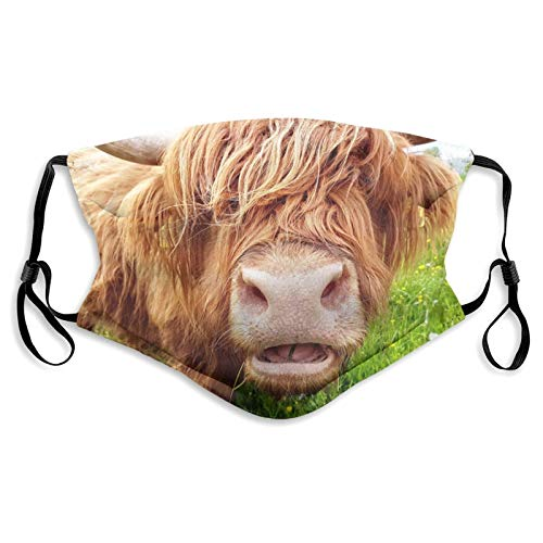 Reusable Funny Animal Cow Face Mask, Washable Balaclavas for Men and Women