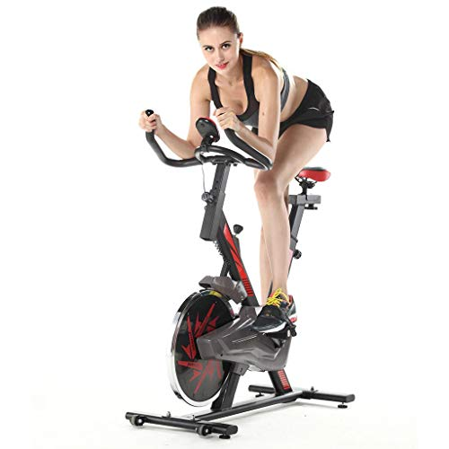 Review 4Clovers Stationary Bicycle, Indoor Cycling Bike, with Heart Rate Sensors, LCD Display, Profe...
