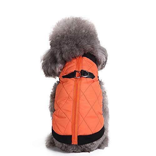 Bluelucon hondenkleding kleine huisdier sweater hond rolkraag pullover zacht comfortabel sweatshirt voor Chihuahua Ted0306DY mops bulldog mantel hondenjas kostuum