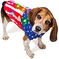 K9 Casuals American Flag Patriotic Dog Costume with Flashing Lights