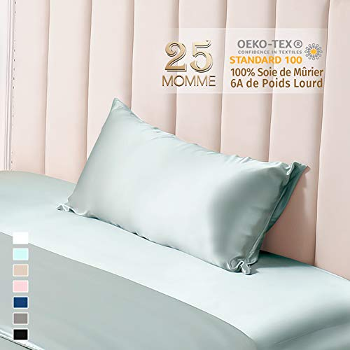 THXSILK 25 Momme - Funda de almohada de seda por ambos lados 100% natural, funda de cojín para el cabello y la piel con cremallera oculta, azul claro, 50x75cm
