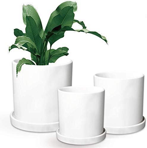 Flower Pots,Small to Large Sized Round Planter Pots,Ceramic Plants Containers,Succulent Pots with...