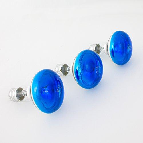showking Set 3xfarbige Lampe R80 230V / 60W zur Partybeleuchtung, Sockel E - 27, blau - Farbleuchtmittel - Partybeleuchtung