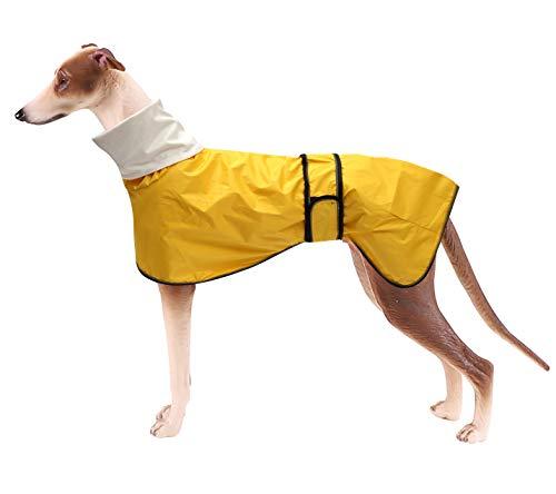 MOREZI Chubasquero para Perro, Cortaviento e Impermeable, Cuello Alto abatible, con Orificio para Cuerda de Seguridad y Hebilla de Velcro, Apto para Perros de tamaño Mediano-Amarillo-XXL