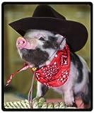 Beautiful And Soft Little Lovely Cute Baby Pig Throw Blanket Fleece 50' x 60' (Medium)