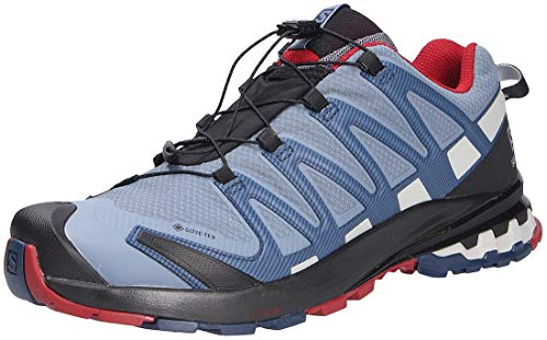 Salomon Men's Trail Running Shoes, XA PRO 3D v8 GTX, Colour: Blue (Flint Stone/Sargasso Sea/Red Dahlia), Size: UK size 10